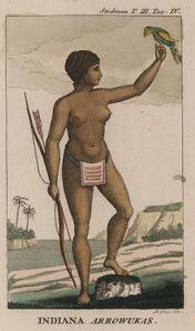 india_arawak_by_John_Gabriel_Stedman